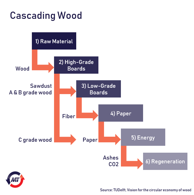 The six steps of cascading wood through the circular economy.