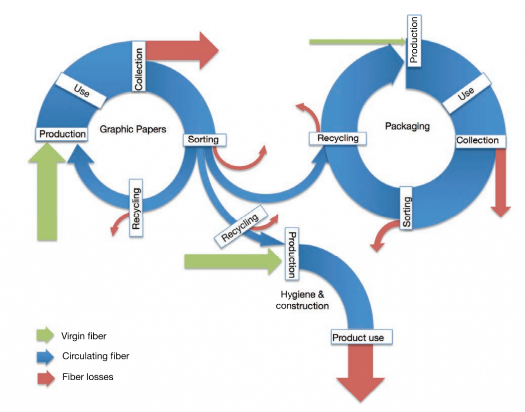 An infographic showing the loss of paper fibers during its journey from production to recycling